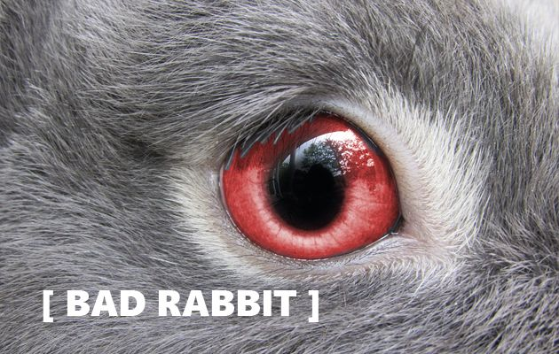 Bad Rabbit - a variation on a theme?